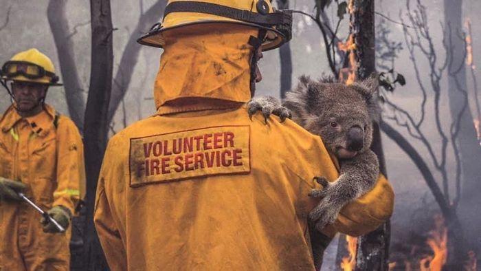 Volunteer Firefighter 1