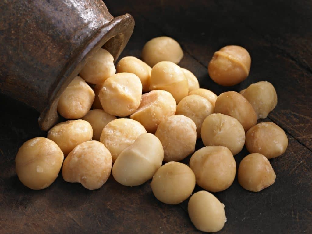 Macadamia Nuts Blog Image