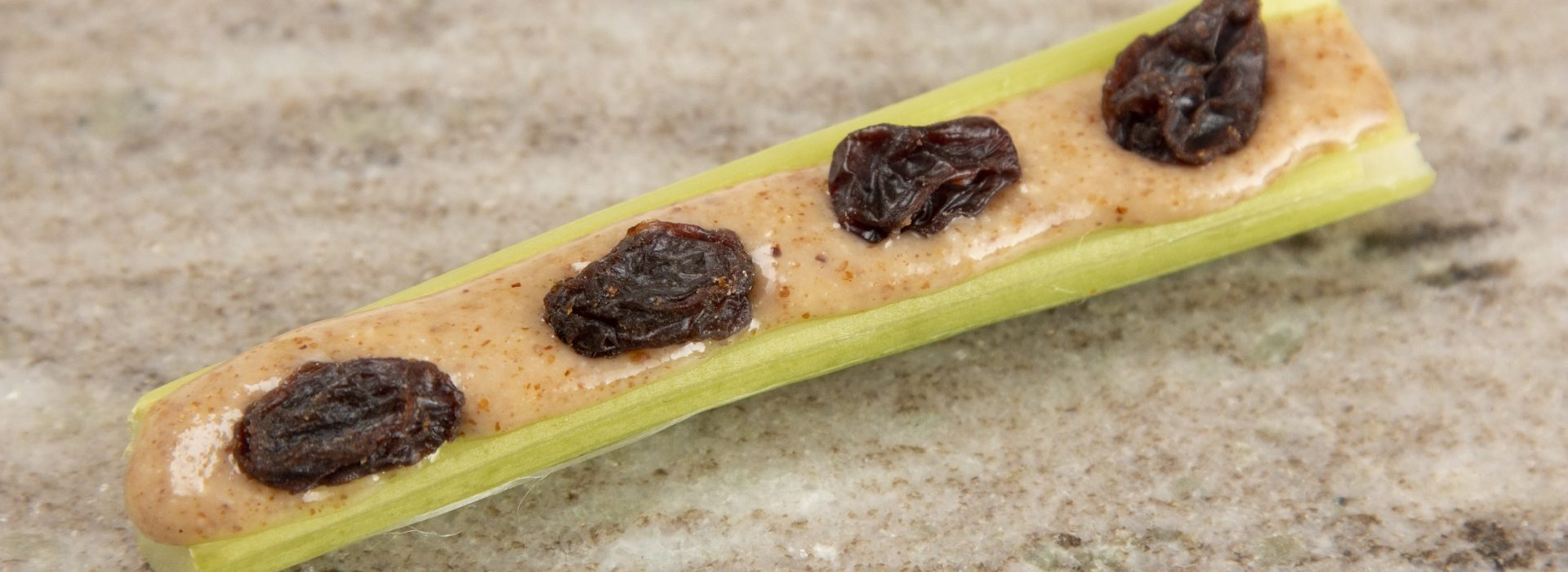Ants on a Log and Other Fun Kid Snacks for your Small Anteaters