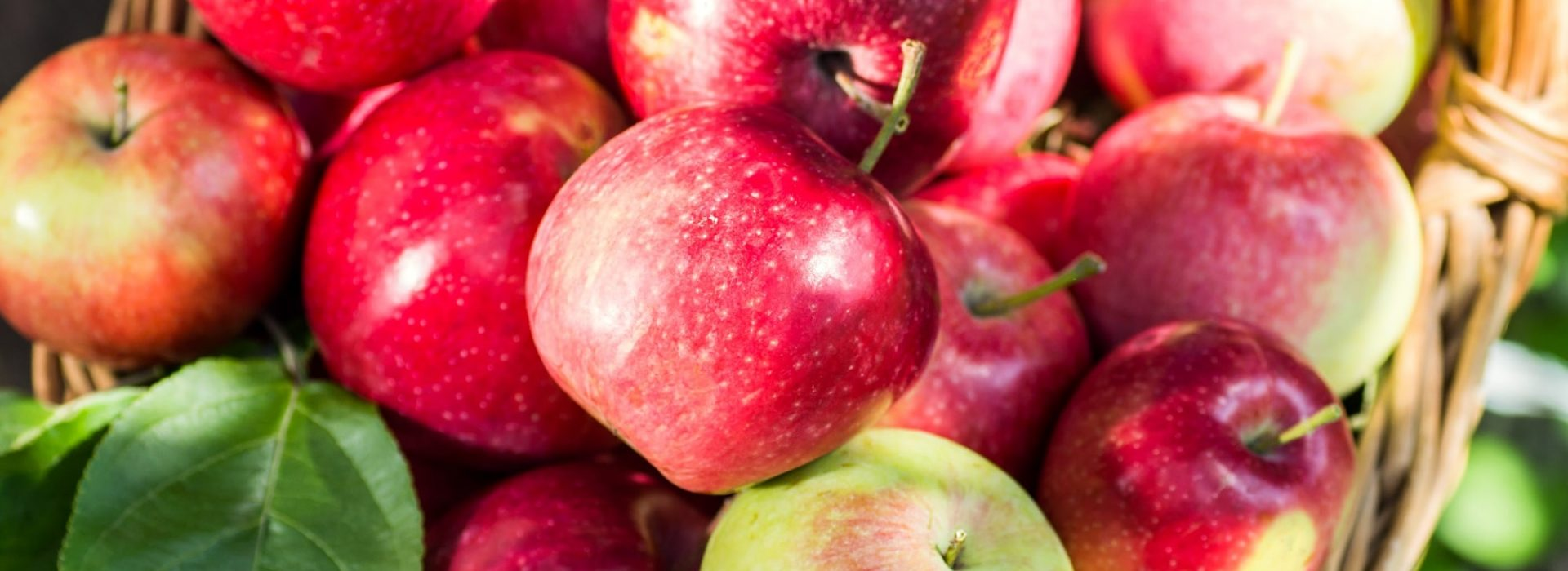 Apple Desserts Blog Image. Image du Blog Desserts aux Pommes.