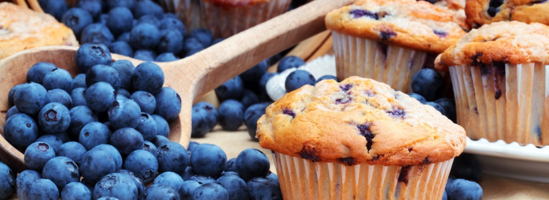 Blueberry Muffin Blog Image