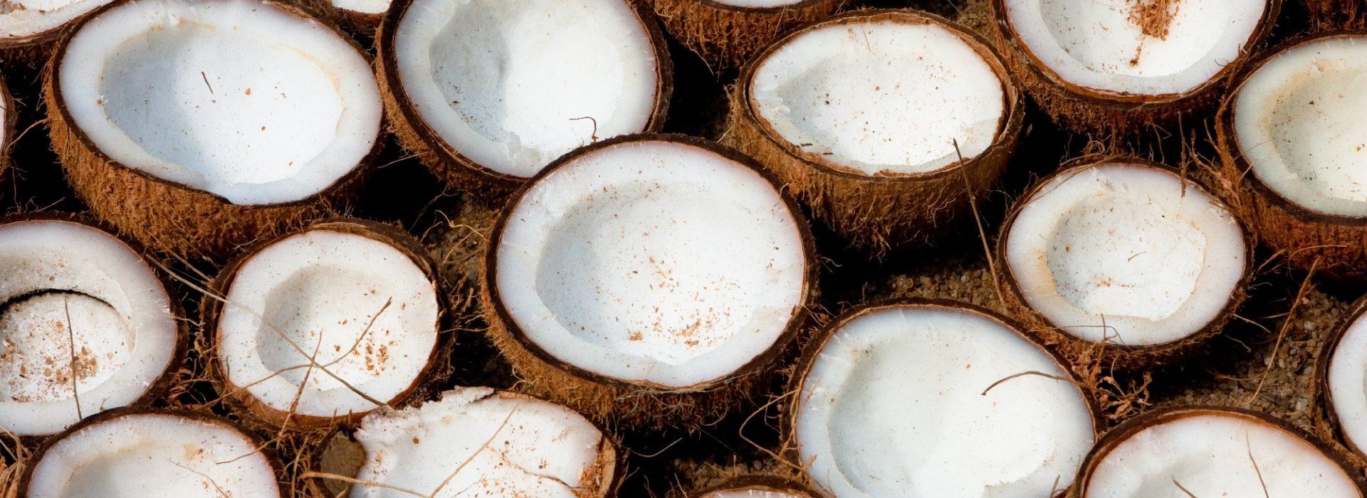 Coconut Desserts Blog Image