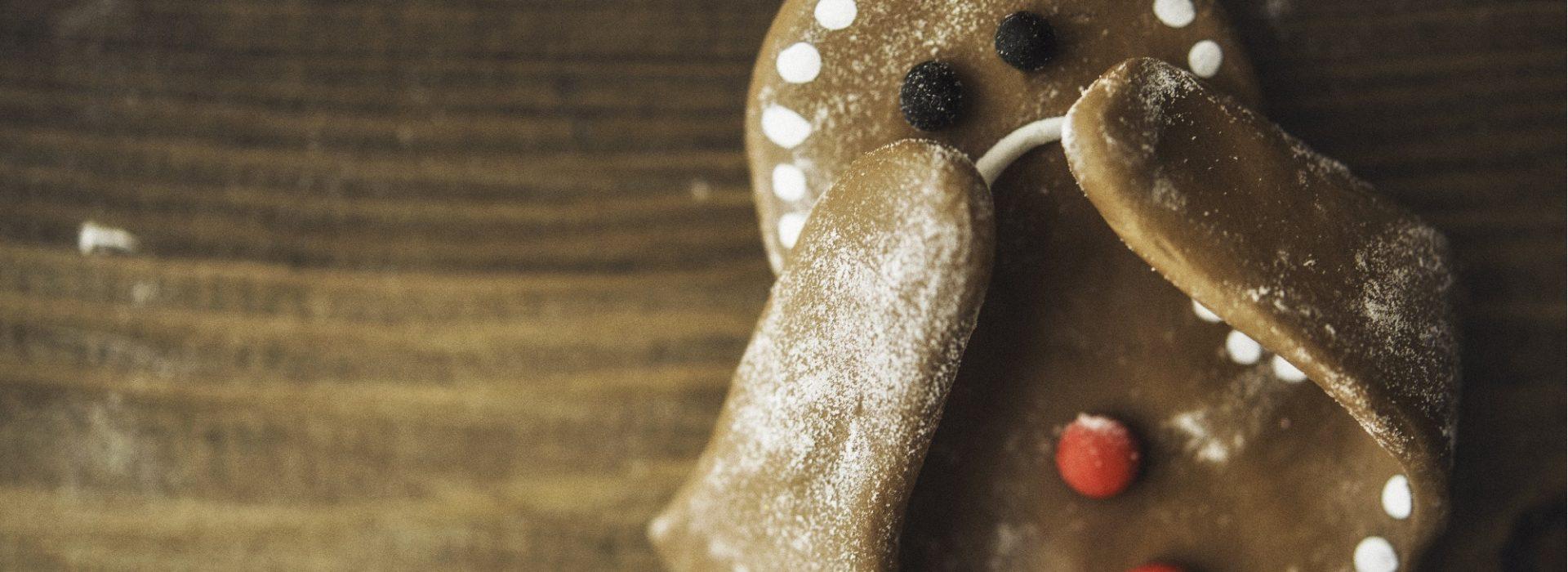 Gingerbread Blog Image